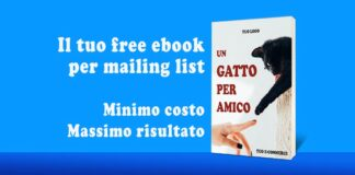 email marketing, lead generation, landing page, mailing list, newsletter